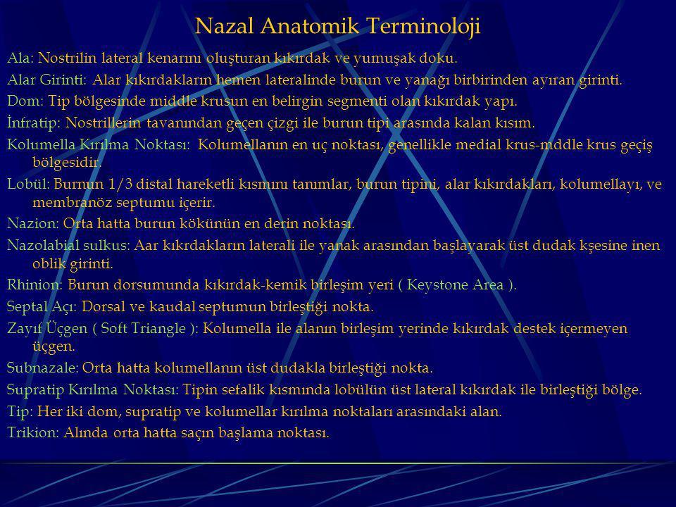 Nazal Anatomik Terminoloji Ala: Nostrilin lateral kenarını oluşturan kıkırdak ve yumuşak doku.