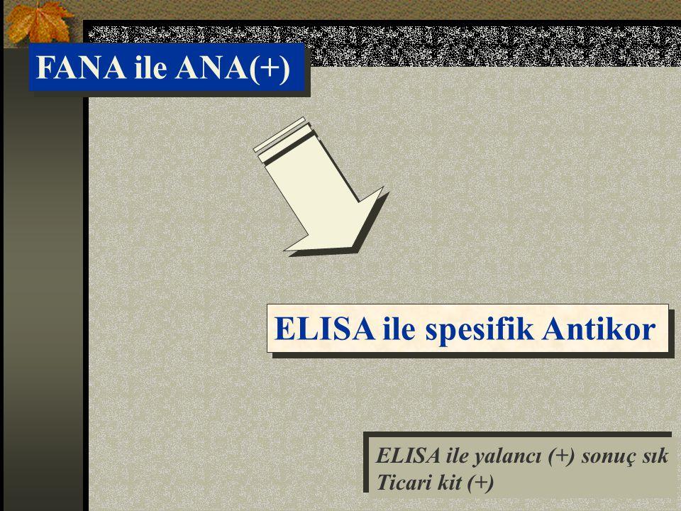 FANA ile ANA(+) ELISA ile spesifik Antikor ELISA ile yalancı (+) sonuç sık Ticari kit (+) ELISA ile yalancı (+) sonuç sık Ticari kit (+)