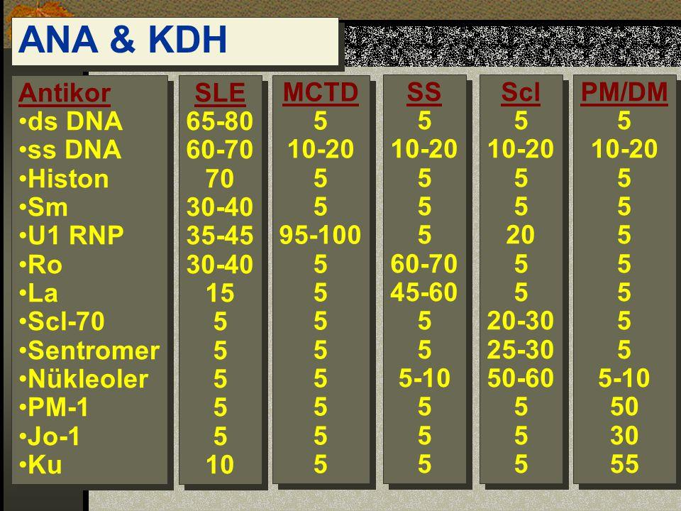 ANA & KDH Antikor ds DNA ss DNA Histon Sm U1 RNP Ro La Scl-70 Sentromer Nükleoler PM-1 Jo-1 Ku Antikor ds DNA ss DNA Histon Sm U1 RNP Ro La Scl-70 Sentromer Nükleoler PM-1 Jo-1 Ku SLE 65-80 60-70 70 30-40 35-45 30-40 15 5 10 SLE 65-80 60-70 70 30-40 35-45 30-40 15 5 10 MCTD 5 10-20 5 95-100 5 MCTD 5 10-20 5 95-100 5 SS 5 10-20 5 60-70 45-60 5 5-10 5 SS 5 10-20 5 60-70 45-60 5 5-10 5 Scl 5 10-20 5 20 5 20-30 25-30 50-60 5 Scl 5 10-20 5 20 5 20-30 25-30 50-60 5 PM/DM 5 10-20 5 5-10 50 30 55 PM/DM 5 10-20 5 5-10 50 30 55