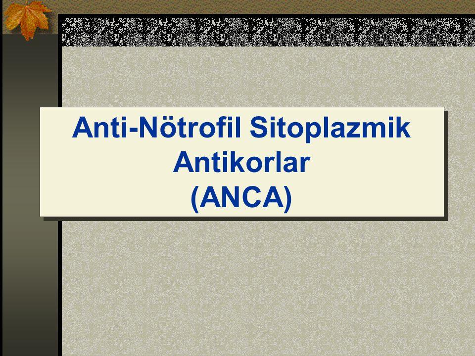 Anti-Nötrofil Sitoplazmik Antikorlar (ANCA) Anti-Nötrofil Sitoplazmik Antikorlar (ANCA)