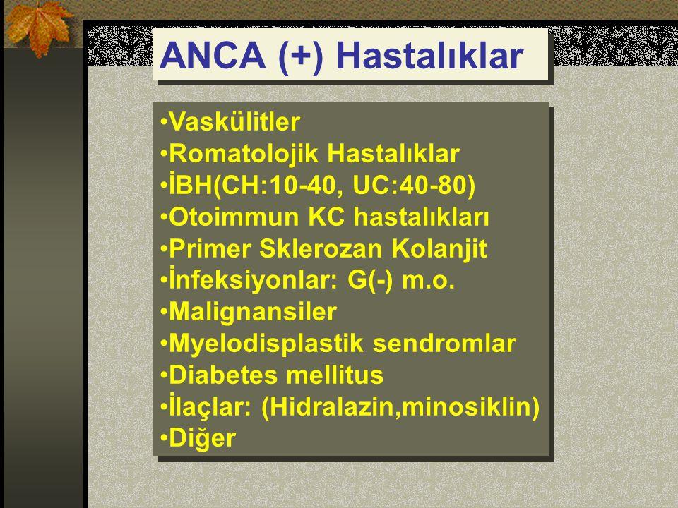 ANCA (+) Hastalıklar Vaskülitler Romatolojik Hastalıklar İBH(CH:10-40, UC:40-80) Otoimmun KC hastalıkları Primer Sklerozan Kolanjit İnfeksiyonlar: G(-) m.o.