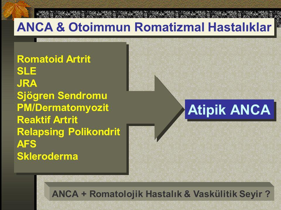 ANCA & Otoimmun Romatizmal Hastalıklar Atipik ANCA ANCA + Romatolojik Hastalık & Vaskülitik Seyir .