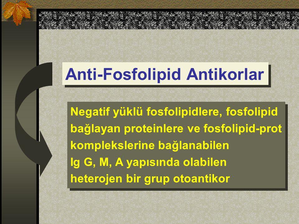 Anti-Fosfolipid Antikorlar Negatif yüklü fosfolipidlere, fosfolipid bağlayan proteinlere ve fosfolipid-prot komplekslerine bağlanabilen Ig G, M, A yapısında olabilen heterojen bir grup otoantikor Negatif yüklü fosfolipidlere, fosfolipid bağlayan proteinlere ve fosfolipid-prot komplekslerine bağlanabilen Ig G, M, A yapısında olabilen heterojen bir grup otoantikor