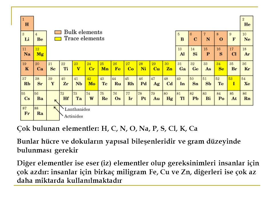 Çok bulunan elementler: H, C, N, O, Na, P, S, Cl, K, Ca Bunlar hücre ve dokuların yapısal bileşenleridir ve gram düzeyinde bulunması gerekir Diğer elementler ise eser (iz) elementler olup gereksinimleri insanlar için çok azdır: insanlar için birkaç miligram Fe, Cu ve Zn, diğerleri ise çok az daha miktarda kullanılmaktadır