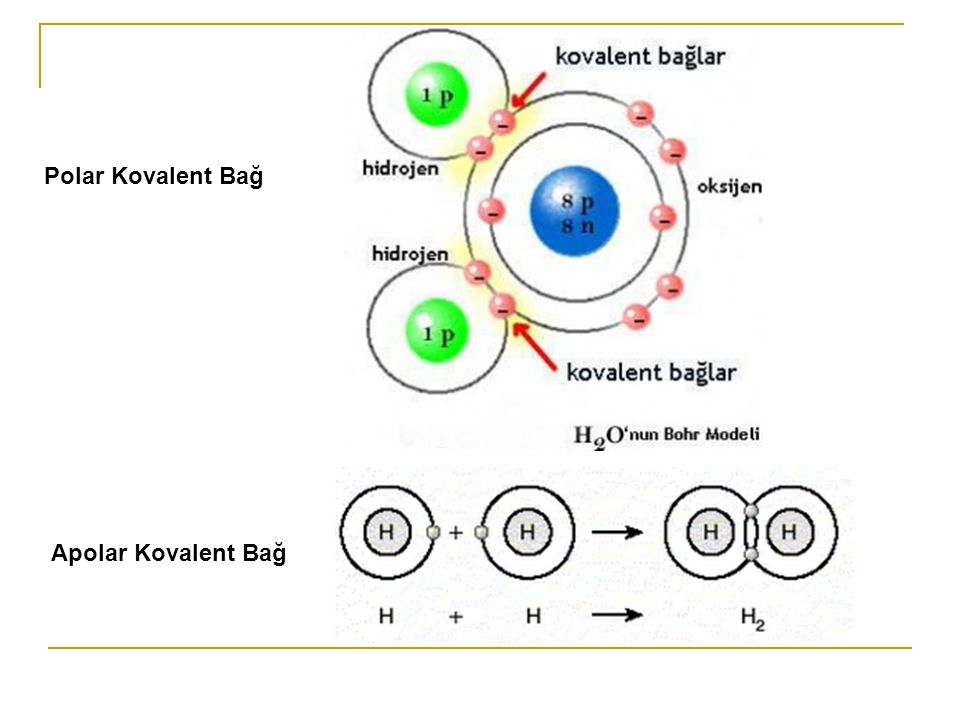 Polar Kovalent Bağ Apolar Kovalent Bağ