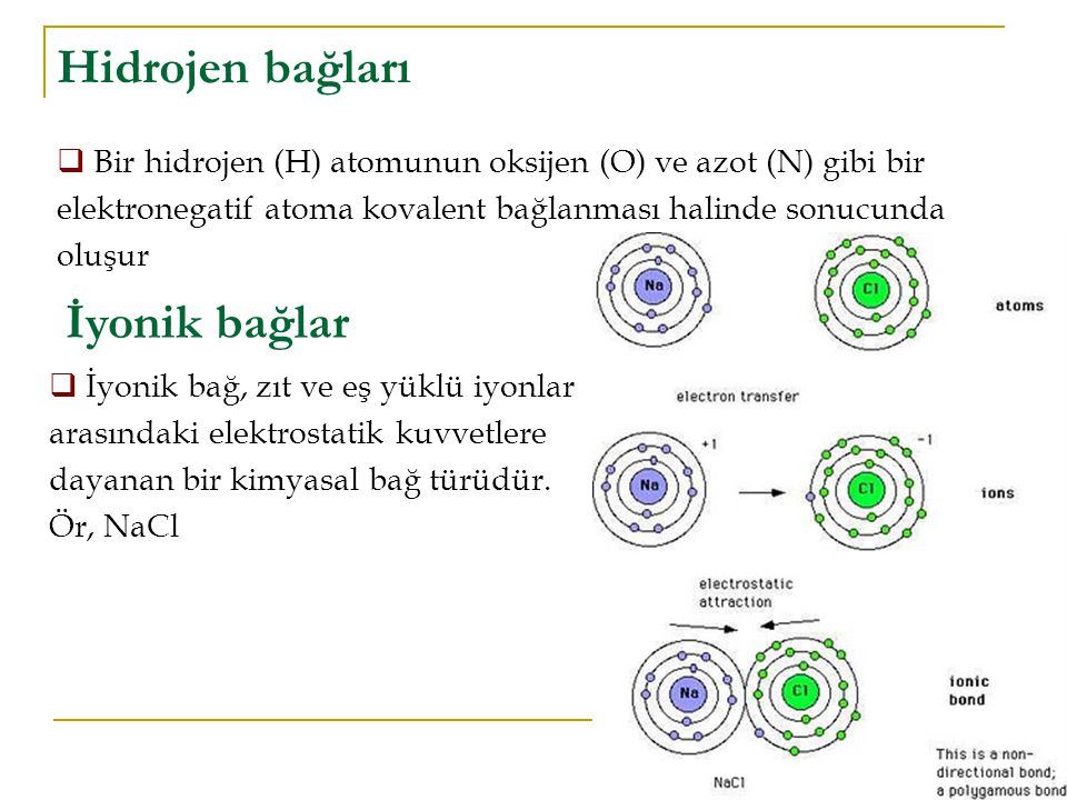 Hidrojen bağları  Bir hidrojen (H) atomunun oksijen (O) ve azot (N) gibi bir elektronegatif atoma kovalent bağlanması halinde sonucunda oluşur İyonik bağlar  İyonik bağ, zıt ve eş yüklü iyonlar arasındaki elektrostatik kuvvetlere dayanan bir kimyasal bağ türüdür.