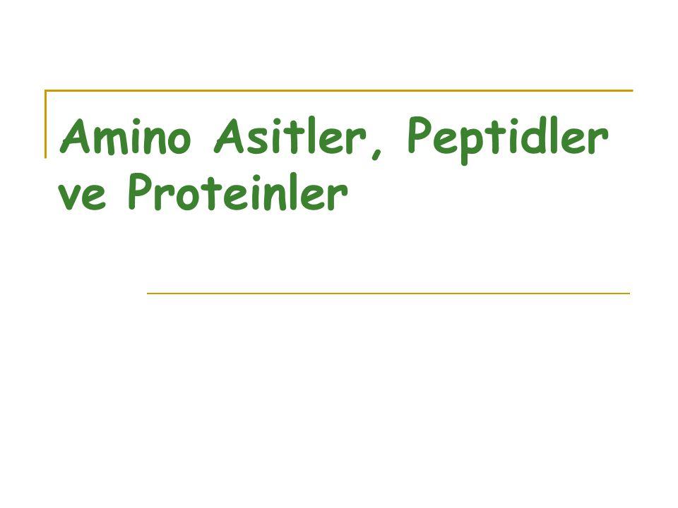 Amino Asitler, Peptidler ve Proteinler