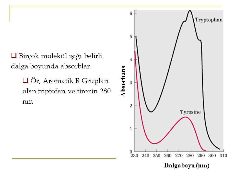 Dalgaboyu (nm) Absorbans  Birçok molekül ışığı belirli dalga boyunda absorblar.  Ör, Aromatik R Grupları olan triptofan ve tirozin 280 nm