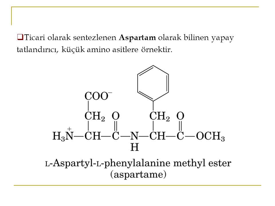  Ticari olarak sentezlenen Aspartam olarak bilinen yapay tatlandırıcı, küçük amino asitlere örnektir.