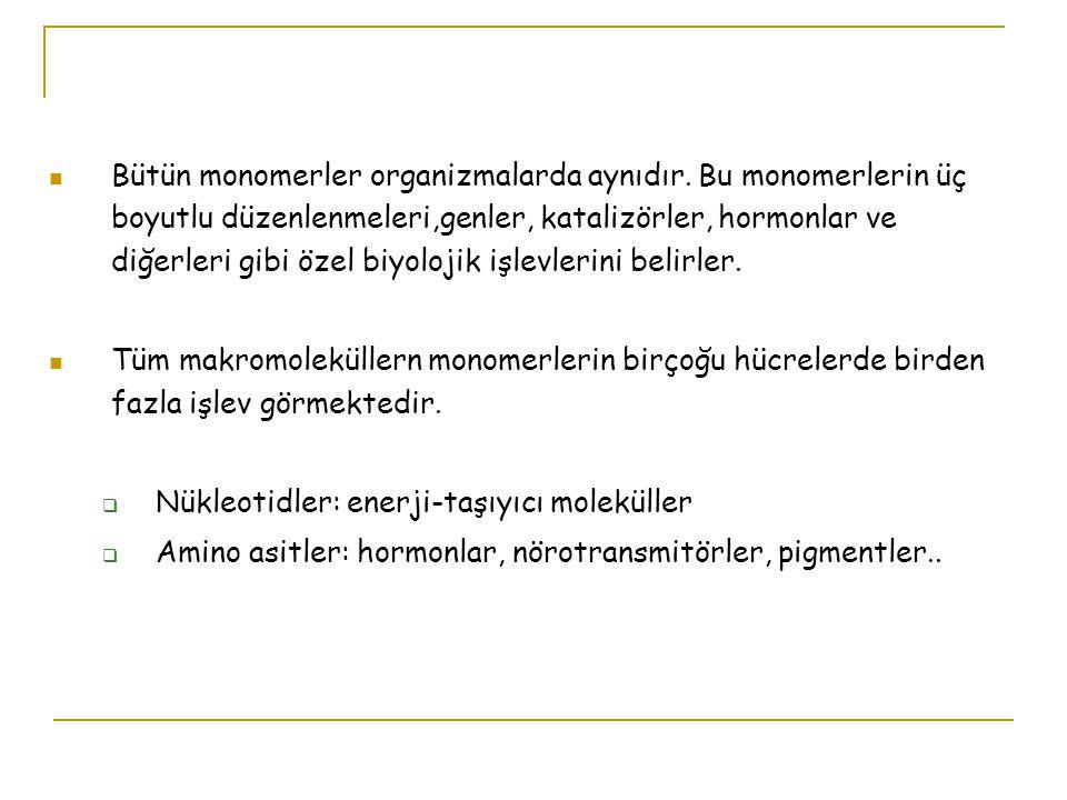 1.Tüm canlılar moleküllerini aynı çeşit monomerik altbirimlerden oluşurlar 2.