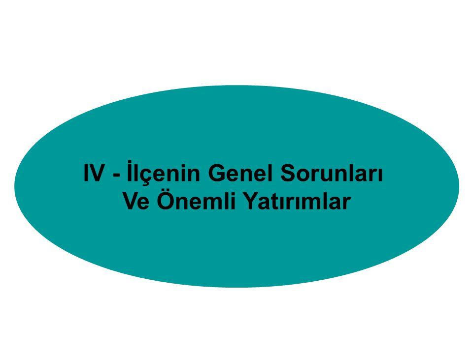 IV - İlçenin Genel Sorunları Ve Önemli Yatırımlar