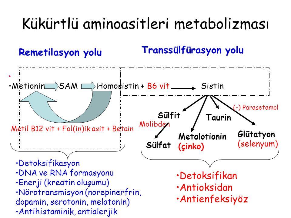 Metionin SAM Homosistin + B6 vit Sistin Remetilasyon yolu Transsülfürasyon yolu Metil B12 vit + Fol(in)ik asit + Betain Sülfat Taurin Glütatyon (selen