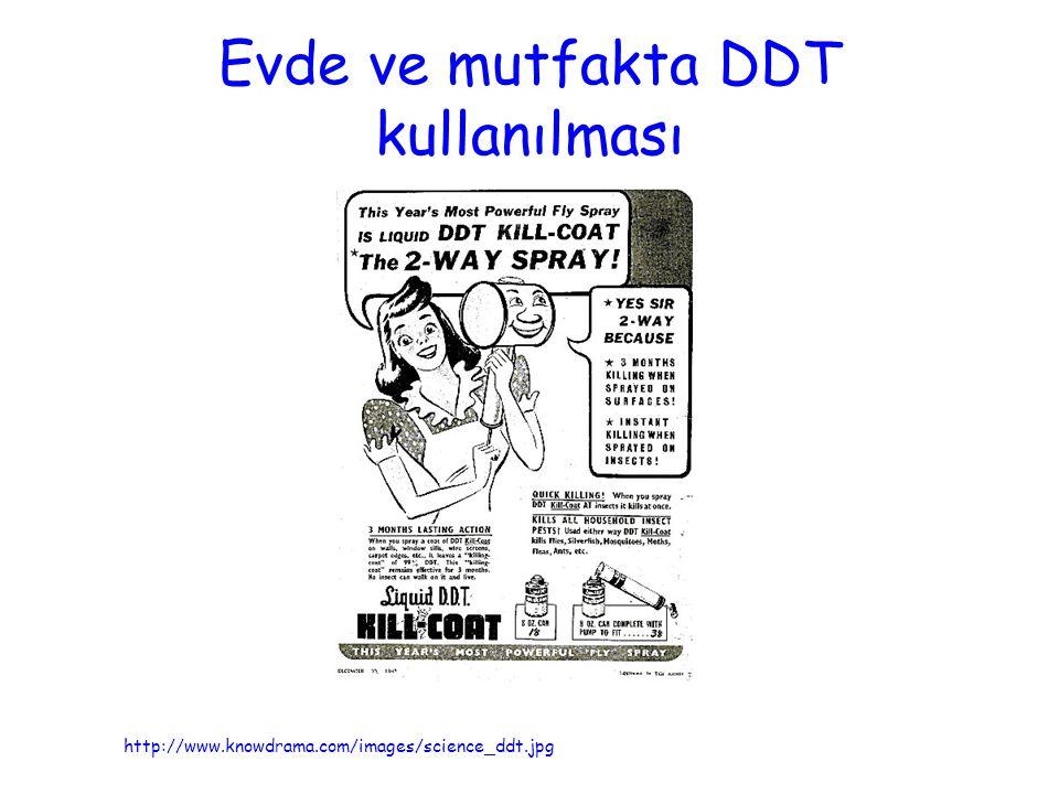 Evde ve mutfakta DDT kullanılması http://www.knowdrama.com/images/science_ddt.jpg