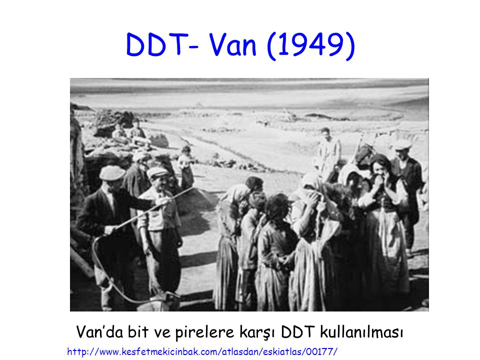 DDT- Van (1949) http://www.kesfetmekicinbak.com/atlasdan/eskiatlas/00177/ Van'da bit ve pirelere karşı DDT kullanılması