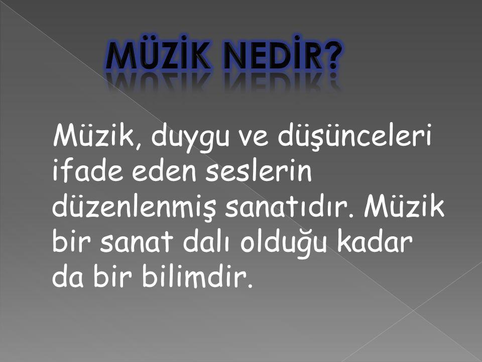 Müzik, duygu ve düşünceleri ifade eden seslerin düzenlenmiş sanatıdır.