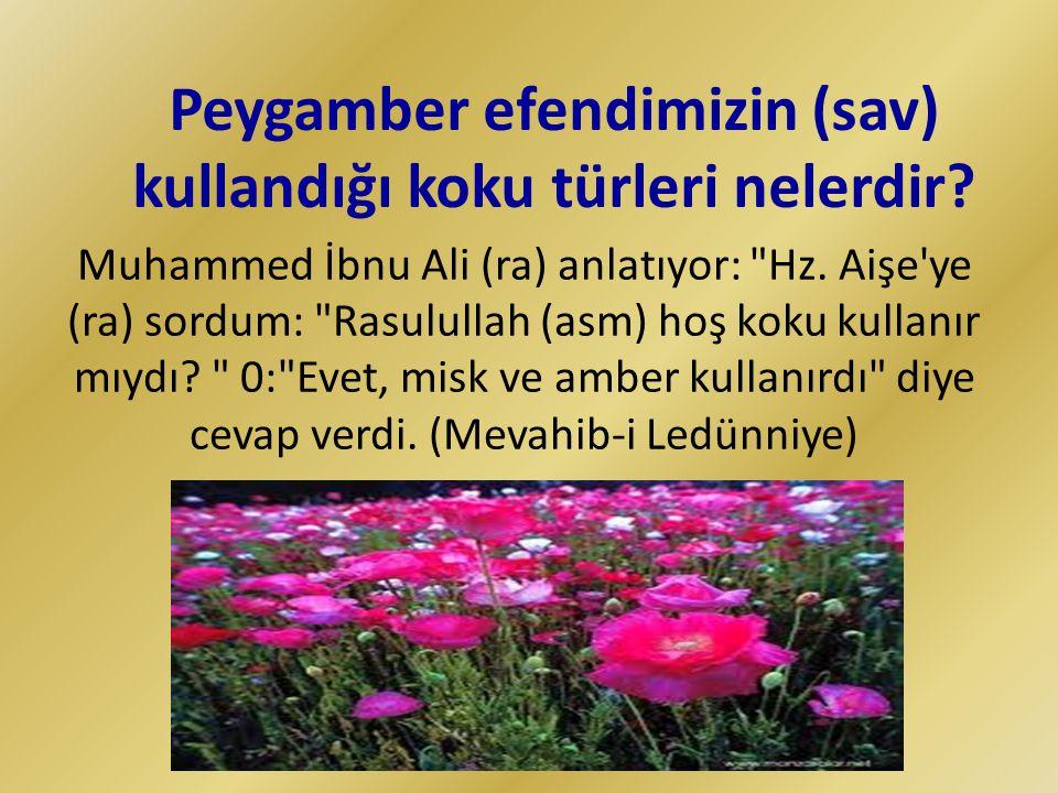 Muhammed İbnu Ali (ra) anlatıyor: