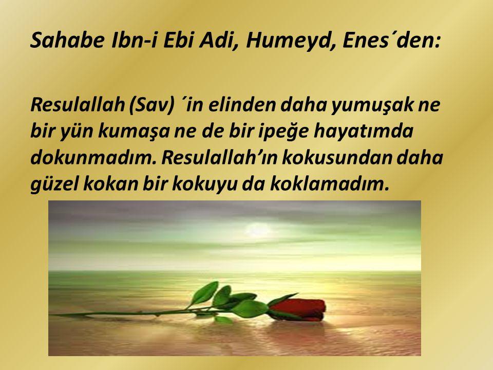 Sahabe Ibn-i Ebi Adi, Humeyd, Enes´den: Resulallah (Sav) ´in elinden daha yumuşak ne bir yün kumaşa ne de bir ipeğe hayatımda dokunmadım. Resulallah'ı