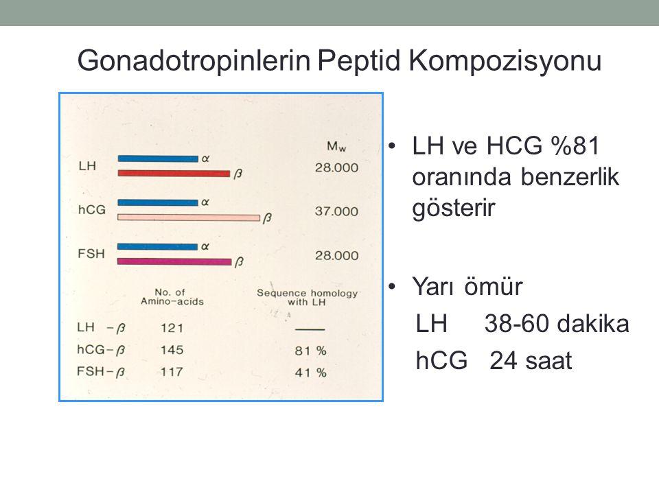 Gonadotropinlerin Peptid Kompozisyonu LH ve HCG %81 oranında benzerlik gösterir Yarı ömür LH 38-60 dakika hCG 24 saat