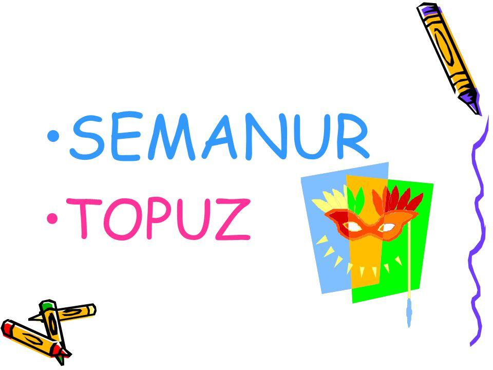 SEMANUR TOPUZ