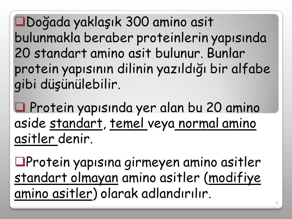 STANDART AMİNO ASİTLER Besin değerlerine göre 2 gruba ayrılırlar Esansiyel amino asitler: Maksimum büyümeyi sağlamak için organizmada yeterli miktarda sentezlenmeyen ve diyetle organizmaya alınması gereken amino asitler Esansiyel olmayan amino asitler: Organizmada sentezlenen amino asitler