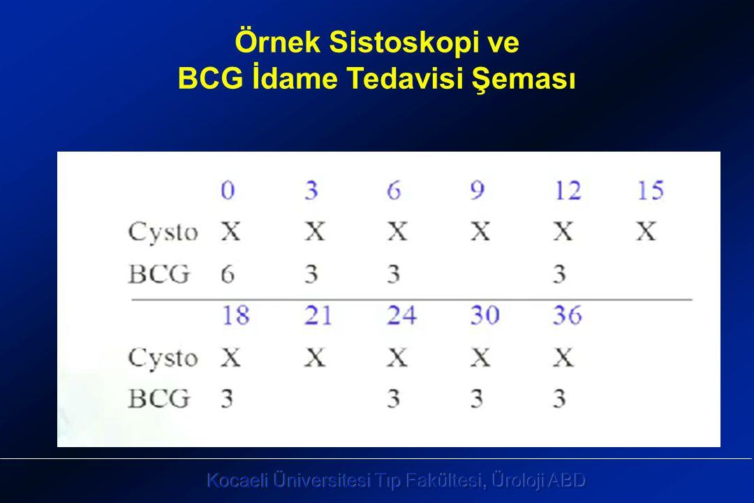 Örnek Sistoskopi ve BCG İdame Tedavisi Şeması