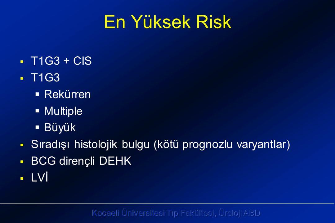 En Yüksek Risk  T1G3 + CIS  T1G3  Rekürren  Multiple  Büyük  Sıradışı histolojik bulgu (kötü prognozlu varyantlar)  BCG dirençli DEHK  LVİ