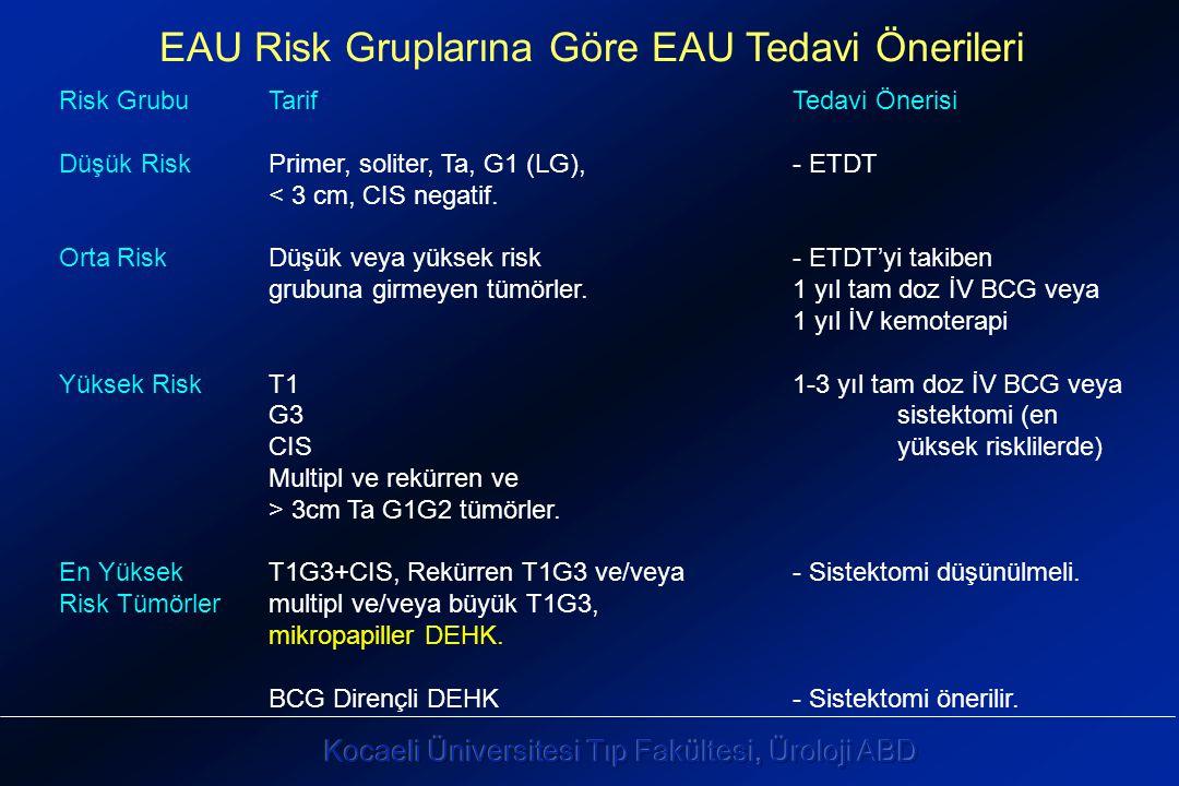EAU Risk Gruplarına Göre EAU Tedavi Önerileri Risk GrubuTarifTedavi Önerisi Düşük RiskPrimer, soliter, Ta, G1 (LG), - ETDT < 3 cm, CIS negatif.