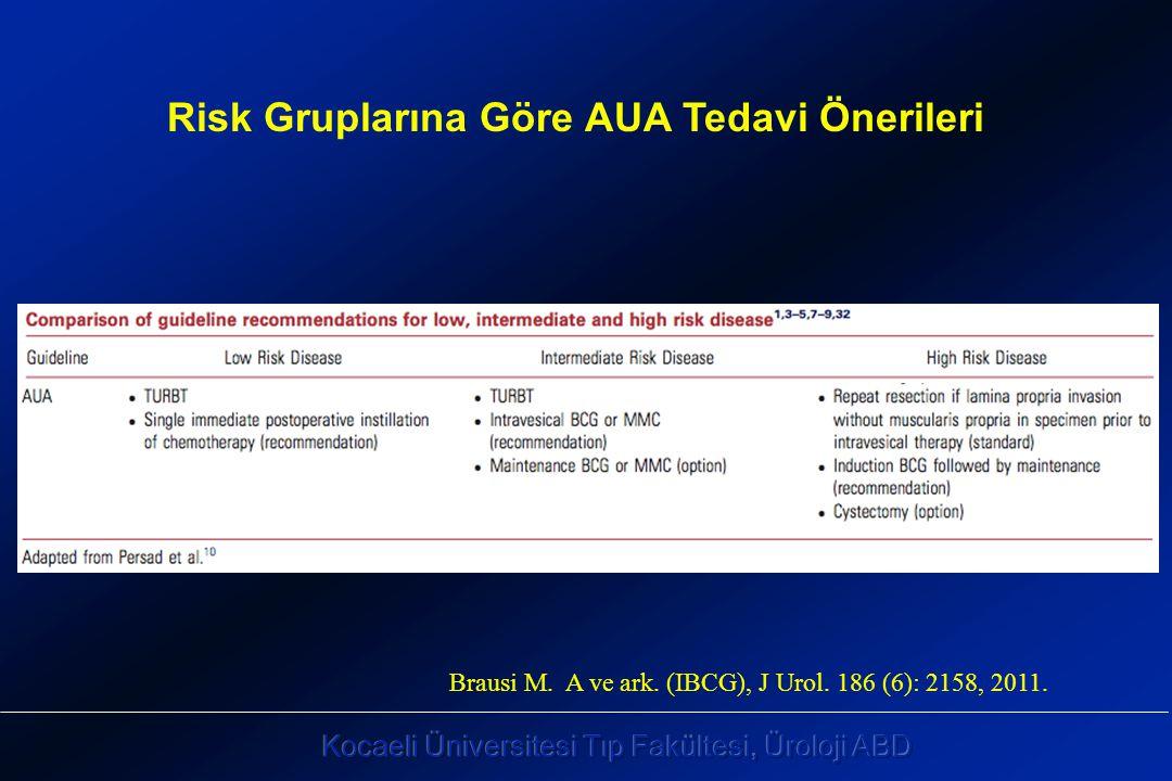 Brausi M. A ve ark. (IBCG), J Urol. 186 (6): 2158, 2011. Risk Gruplarına Göre AUA Tedavi Önerileri