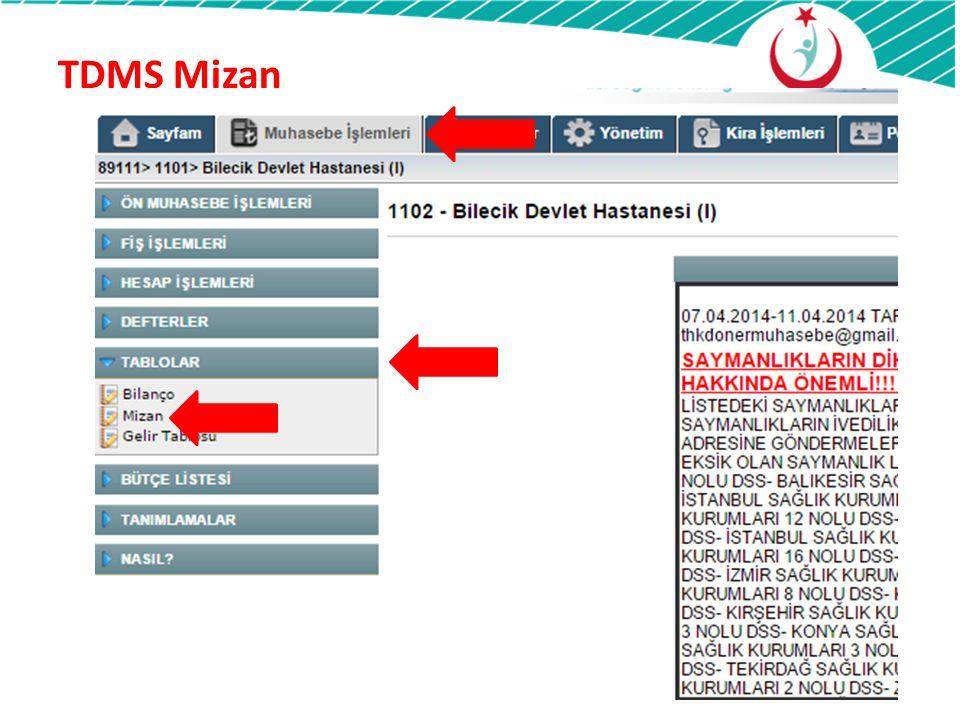 TDMS Mizan