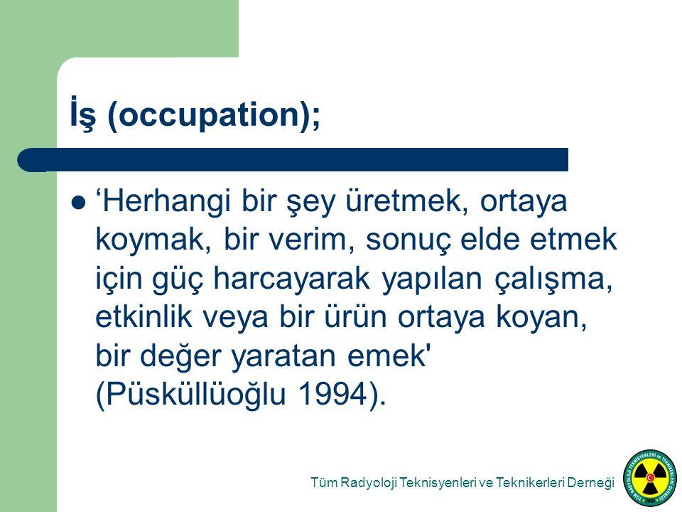 İş (occupation); 'Herhangi bir şey üretmek, ortaya koymak, bir verim, sonuç elde etmek için güç harcayarak yapılan çalışma, etkinlik veya bir ürün ortaya koyan, bir değer yaratan emek (Püsküllüoğlu 1994).