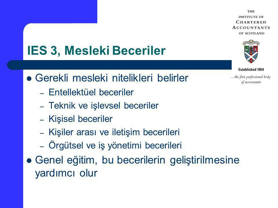IES 3, Mesleki Beceriler Gerekli mesleki nitelikleri belirler – Entellektüel beceriler – Teknik ve işlevsel beceriler – Kişisel beceriler – Kişiler ar