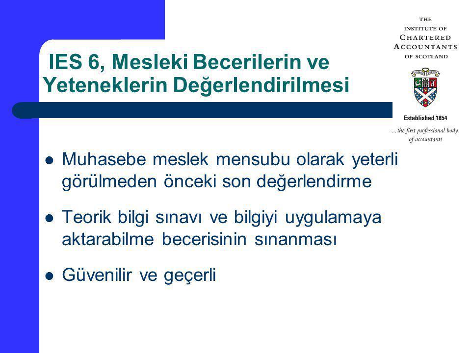 IES 6, Mesleki Becerilerin ve Yeteneklerin Değerlendirilmesi Muhasebe meslek mensubu olarak yeterli görülmeden önceki son değerlendirme Teorik bilgi s