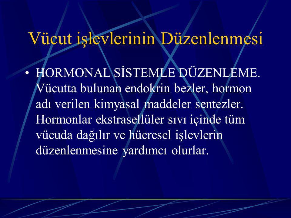 Vücut işlevlerinin Düzenlenmesi HORMONAL SİSTEMLE DÜZENLEME.