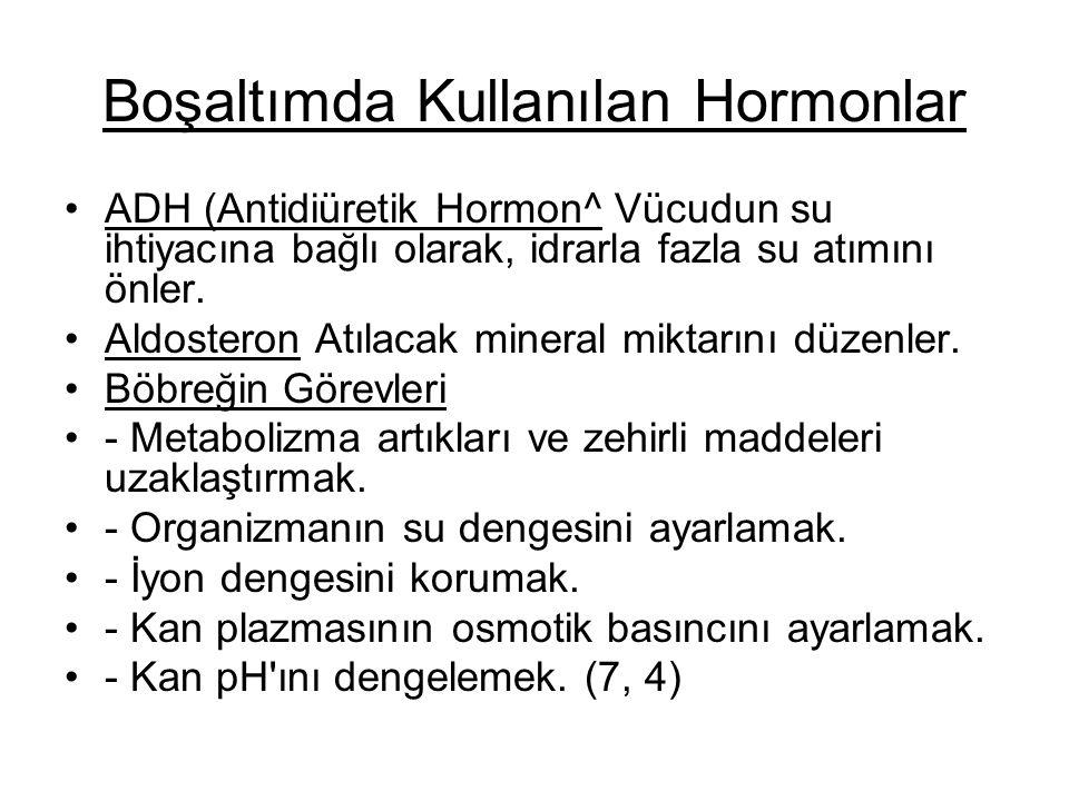 Boşaltımda Kullanılan Hormonlar ADH (Antidiüretik Hormon^ Vücudun su ihtiyacına bağlı olarak, idrarla fazla su atımını önler. Aldosteron Atılacak min