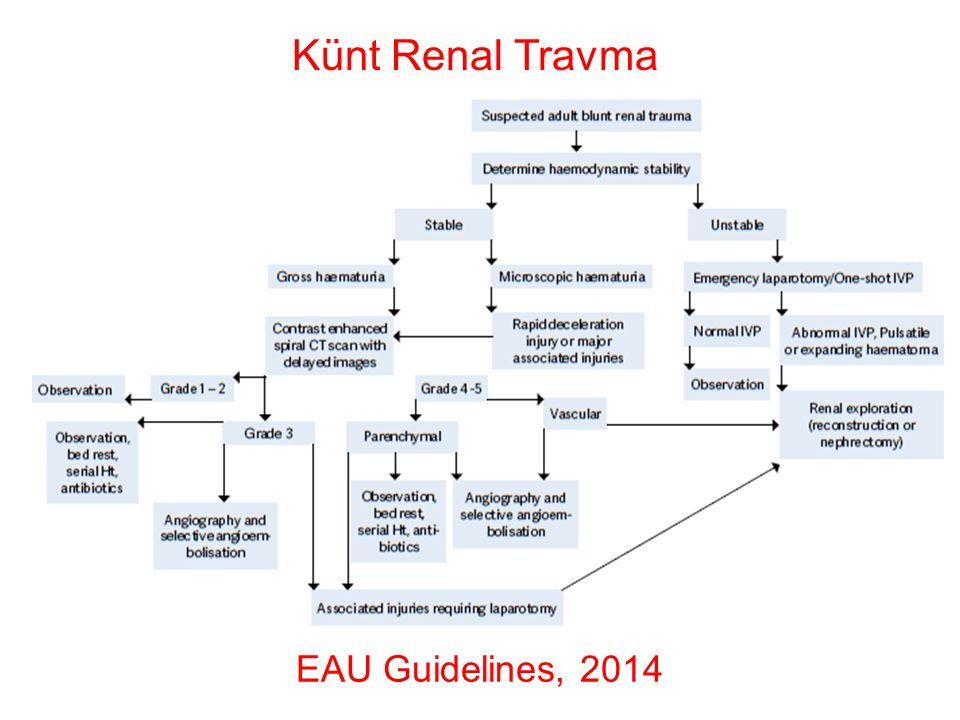 EAU Guidelines, 2014 Penetran Renal Travma