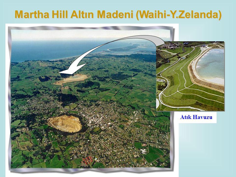 Atık Havuzu Martha Hill Altın Madeni (Waihi-Y.Zelanda)