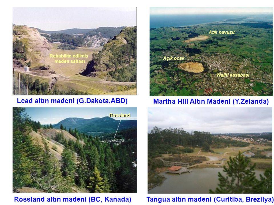 Martha Hill Altın Madeni (Y.Zelanda) Lead altın madeni (G.Dakota,ABD) Rossland altın madeni (BC, Kanada)Tangua altın madeni (Curitiba, Brezilya) Rehab