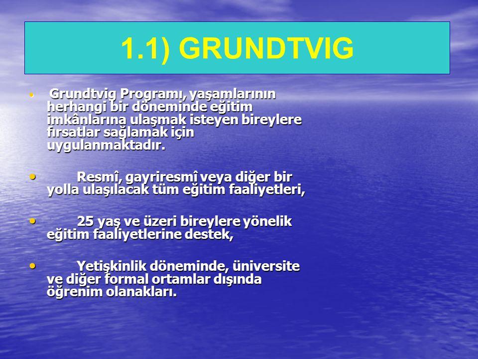 GRUNDTVIG  Grundtvig Programı, yaşamlarının herhangi bir döneminde eğitim imkânlarına ulaşmak isteyen bireylere fırsatlar sağlamak için uygulanmaktadır.