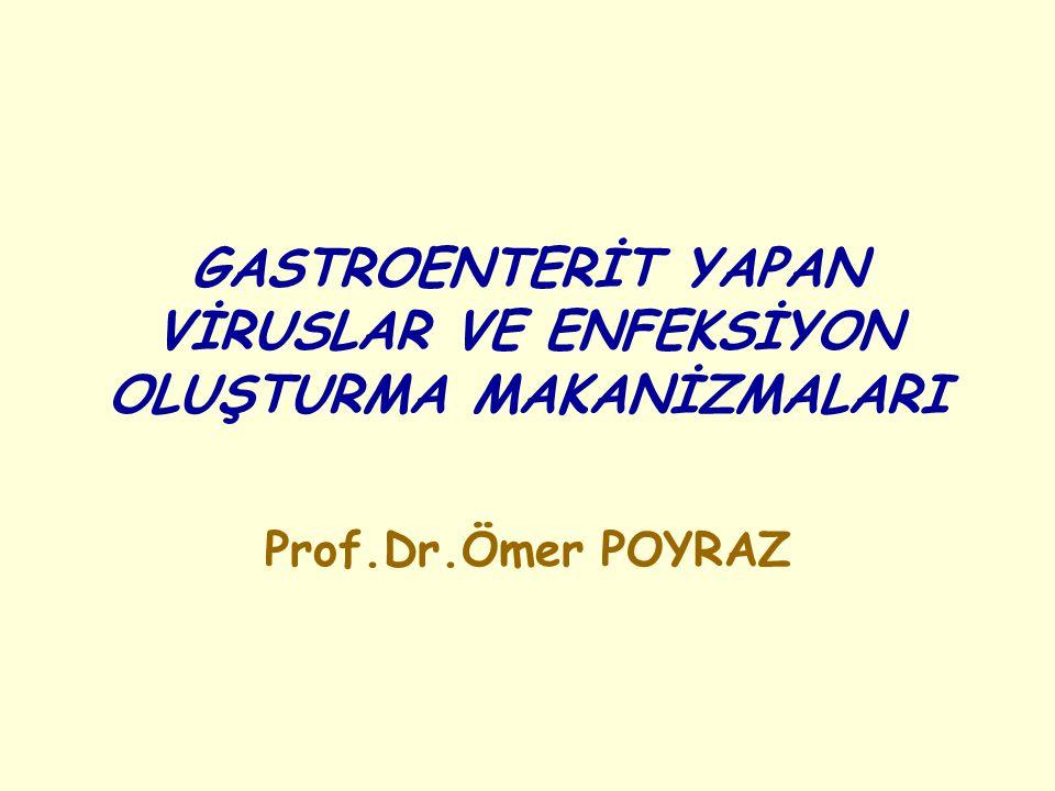 GASTROENTERİT YAPAN VİRÜSLER Viral gastroenteritler fekal oral yolla bulaşmaları nedeniyle, alt yapı yetersizliği bulunan gelişmekte olan ülkelerin en yaygın hastalıkları arasındadır.