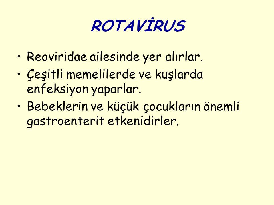 ROTAVİRUS Reoviridae ailesinde yer alırlar. Çeşitli memelilerde ve kuşlarda enfeksiyon yaparlar. Bebeklerin ve küçük çocukların önemli gastroenterit e