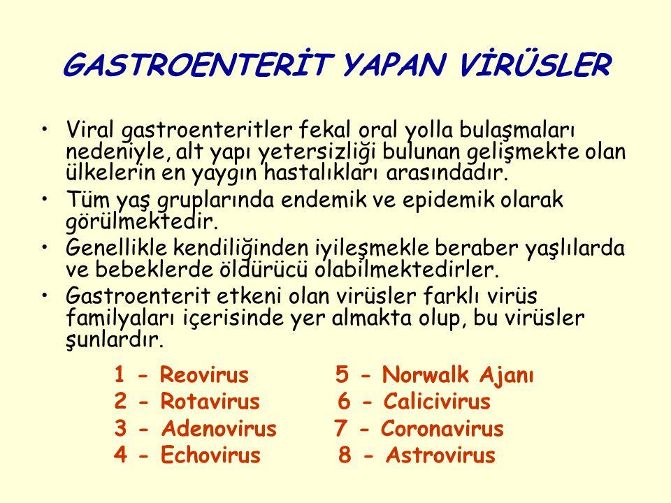 Sınıflandırılması İnsan ve hayvanlarda enfeksiyon oluşturan Rotavirus lar gruplara, alt gruplara ve serotiplere ayrılmaktadır.