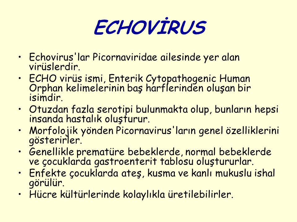 ECHOVİRUS Echovirus'lar Picornaviridae ailesinde yer alan virüslerdir. ECHO virüs ismi, Enterik Cytopathogenic Human Orphan kelimelerinin baş harfleri