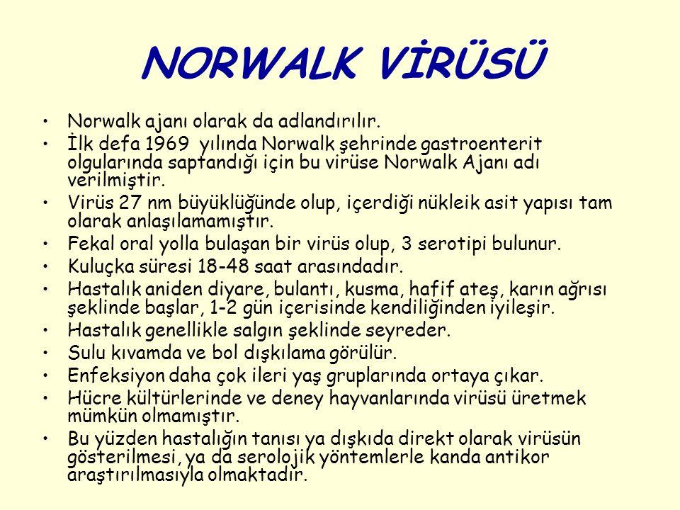 NORWALK VİRÜSÜ Norwalk ajanı olarak da adlandırılır. İlk defa 1969 yılında Norwalk şehrinde gastroenterit olgularında saptandığı için bu virüse Norwal