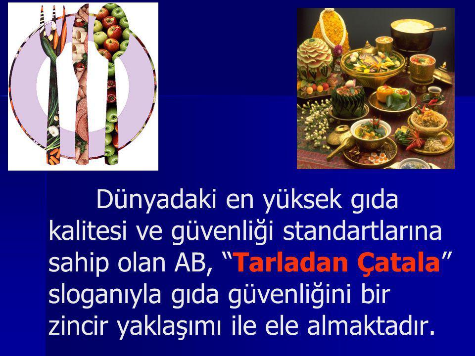 gıda güvenliği Türkiye' nin üyelik müzakerelerinin başlamasıyla, Türk mevzuatının AB müktesebatına uyumu çerçevesinde, gıda güvenliği alanında da köklü bir değişim gerçekleşmiştir.