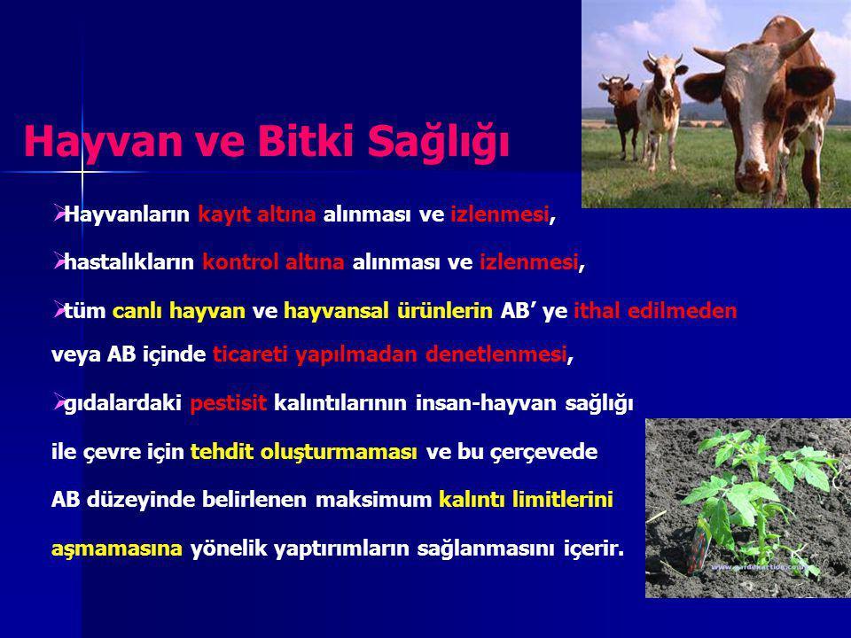 Hayvan ve Bitki Sağlığı   Hayvanların kayıt altına alınması ve izlenmesi,   hastalıkların kontrol altına alınması ve izlenmesi,   tüm canlı hayv