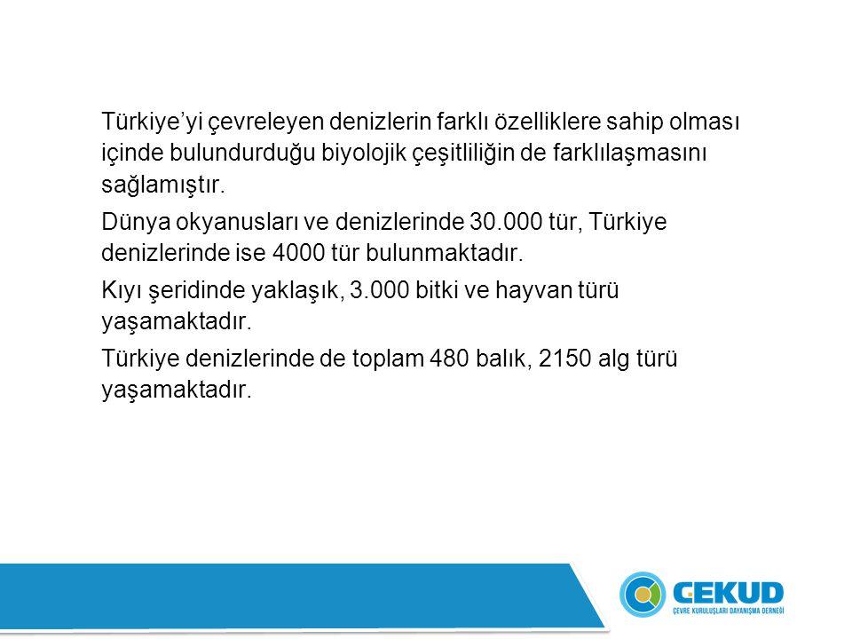 Türkiye'yi çevreleyen denizlerin farklı özelliklere sahip olması içinde bulundurduğu biyolojik çeşitliliğin de farklılaşmasını sağlamıştır. Dünya okya