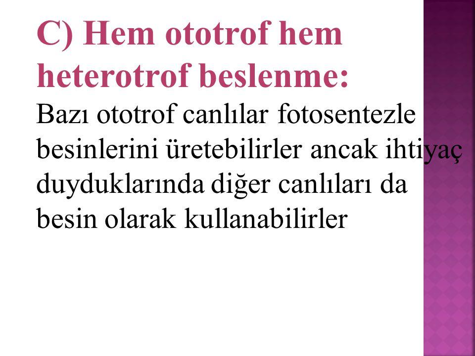 . 2 ) Heterotroflar: İhtiyacı olan organik besinleri diğer canlıların vücudundan karşılarlar.