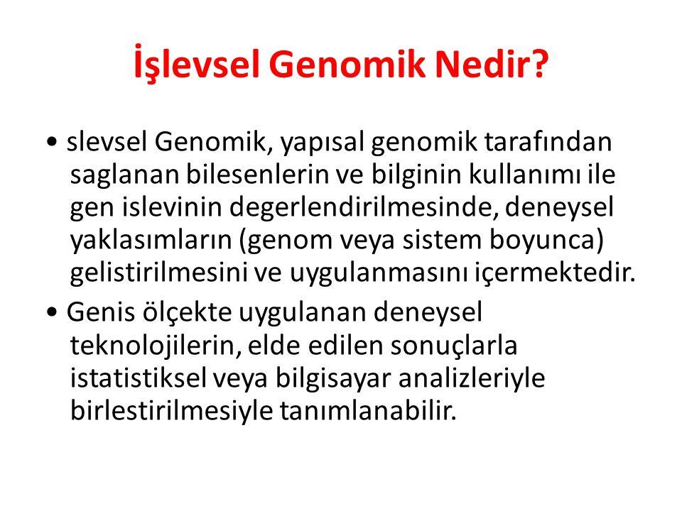İşlevsel Genomik Nedir? slevsel Genomik, yapısal genomik tarafından saglanan bilesenlerin ve bilginin kullanımı ile gen islevinin degerlendirilmesinde