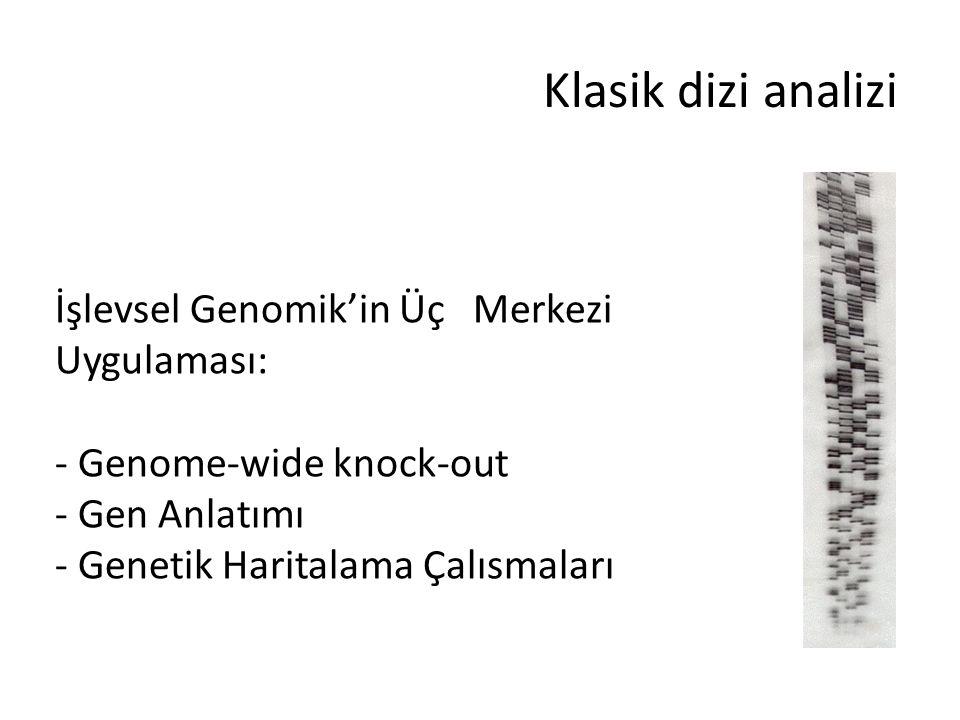 Klasik dizi analizi İşlevsel Genomik'in Üç Merkezi Uygulaması: - Genome-wide knock-out - Gen Anlatımı - Genetik Haritalama Çalısmaları
