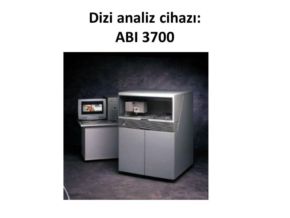 Dizi analiz cihazı: ABI 3700